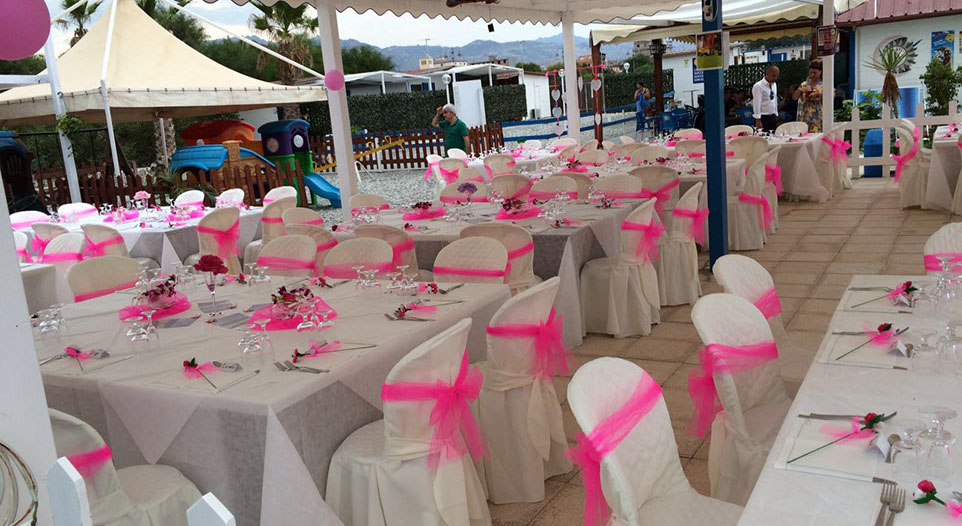 jammin wedding planner 1